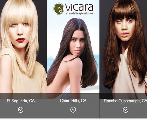 Vicara Salon Project